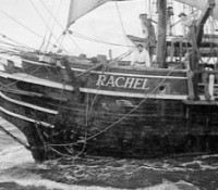 The Pequod and the Rachel
